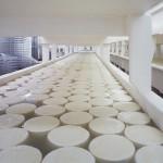 Exportaciones de lácteos de EEUU se contrajeron en la primera mitad del año