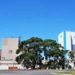 Fonterra recortó previsión de crecimiento de la producción de leche para Nueva Zelanda
