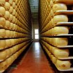 Estabilidad para los lácteos en subasta de Fonterra